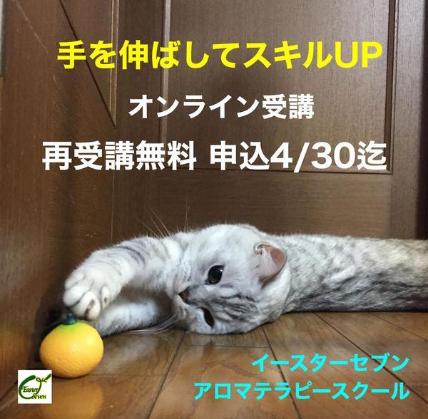 アロマ資格コース再受講無料ご契約4/30迄!