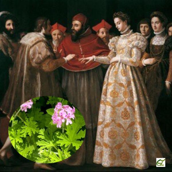 アロマ検定*グラースを「香水の都」にしたゼラニウムと女性